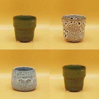 cactuspotjes